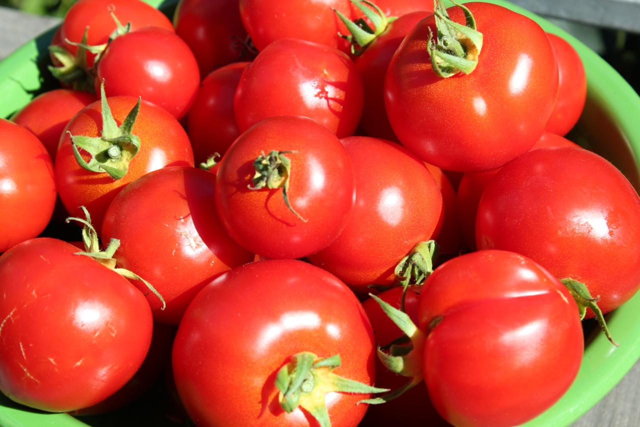 Fresh Tomato Sauce - tomatoes