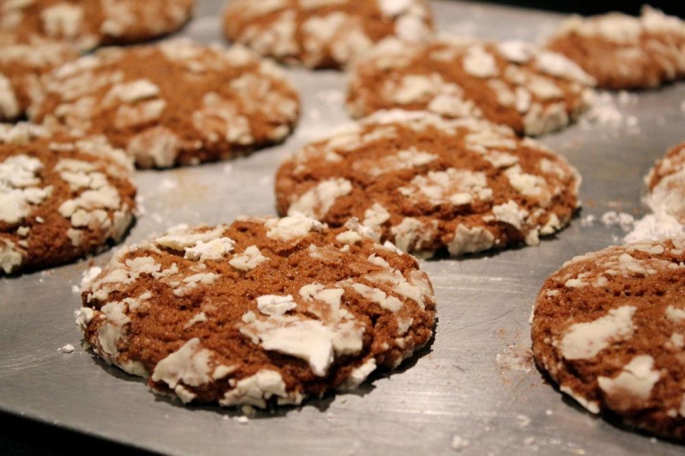 molasses spice cookies 2