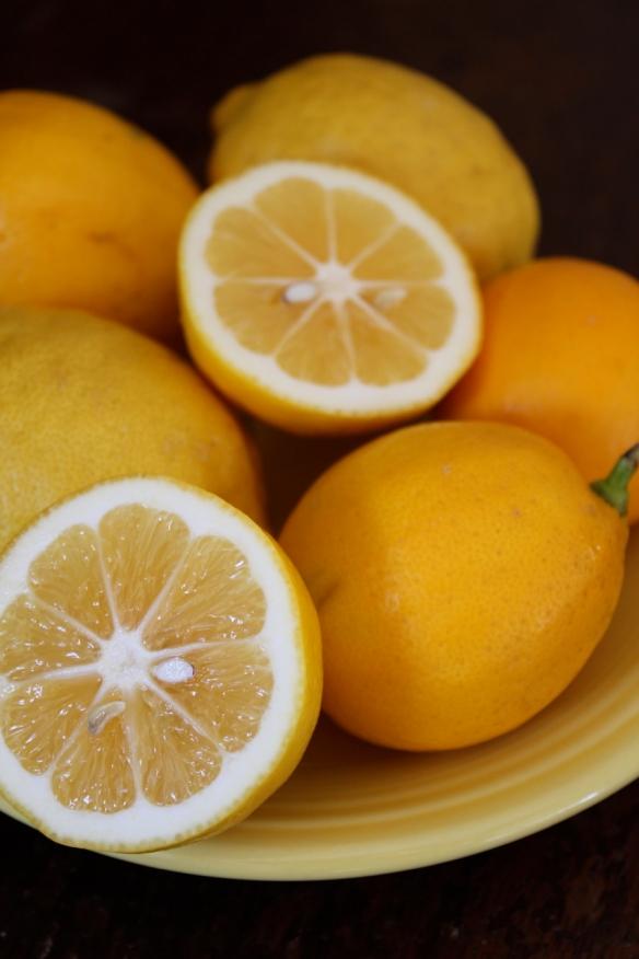 Lemon Curd lemons