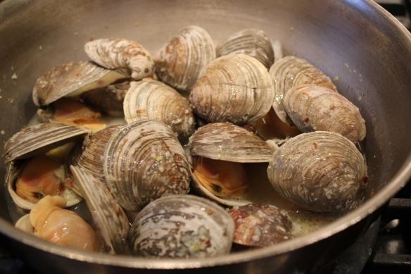 clams 6
