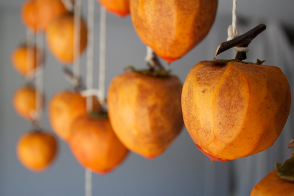 peeled persimmons, day 3 of drying